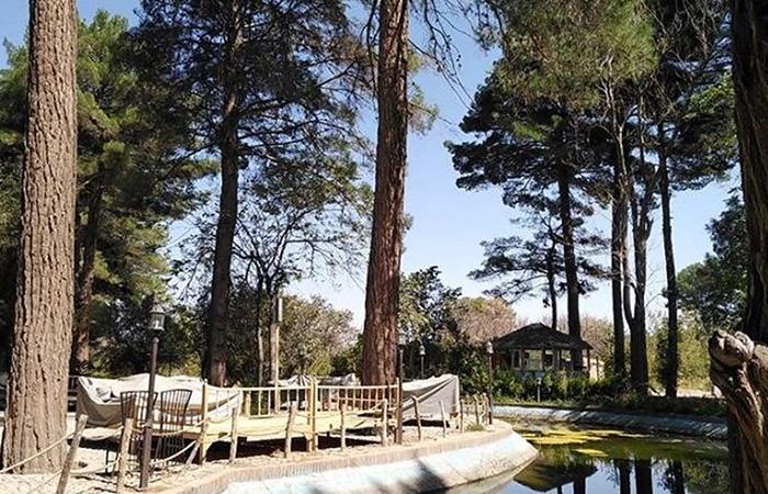 Shokat Abad Garden