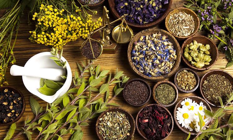 Iran Medical Herbs