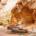 Qeshm Geopark Continues to Prosper